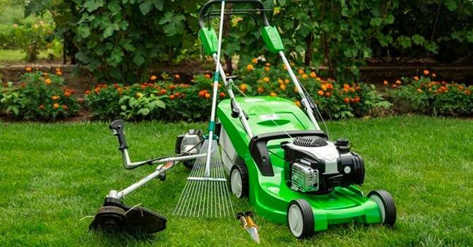 Инструменты для стрижки газона