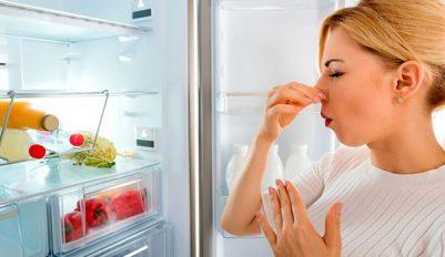 Как избавиться от запаха в холодильнике быстро