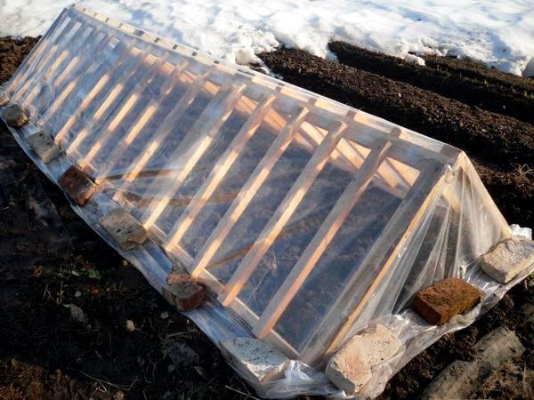 Использование паллет в огороде