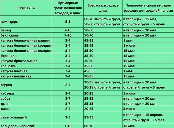 Таблица для определения времени посева овощей на рассаду