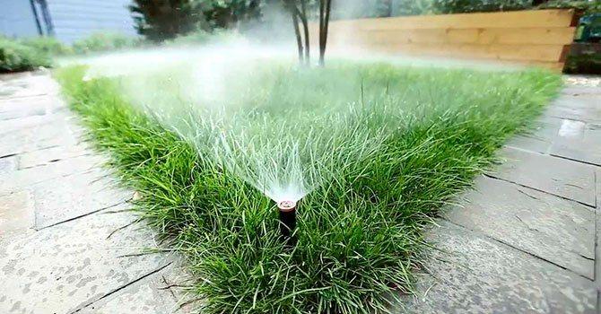 Автоматический полив газона своими руками: устройство поливных систем газона, рекомендации