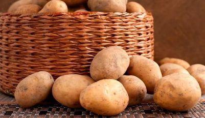 Храним картофель дома
