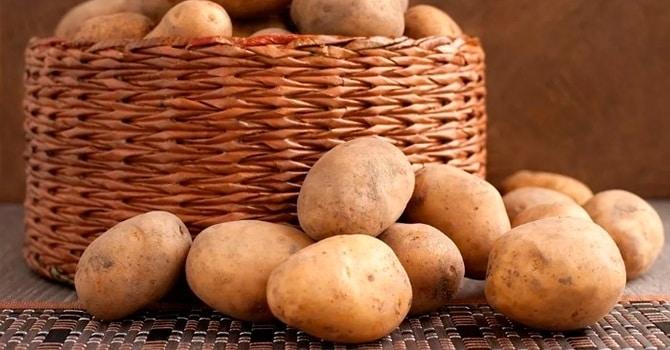 Как сохранить урожай картошки
