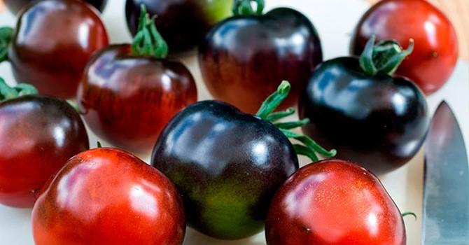 Черные помидоры: польза