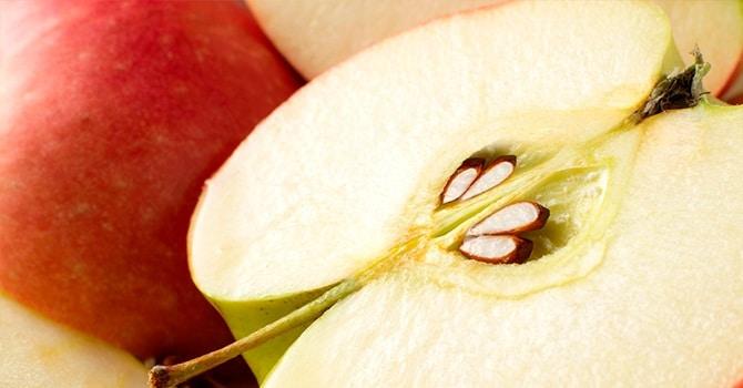 Польза яблочных косточек