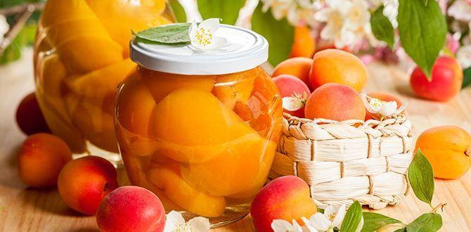 Варим компот из абрикосов