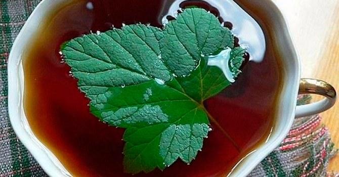 Обязательно поможет расслабиться отвар из листьев смородины и малины