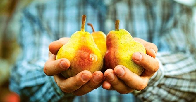 Чтобы восстановить силы съешьте пару фруктов