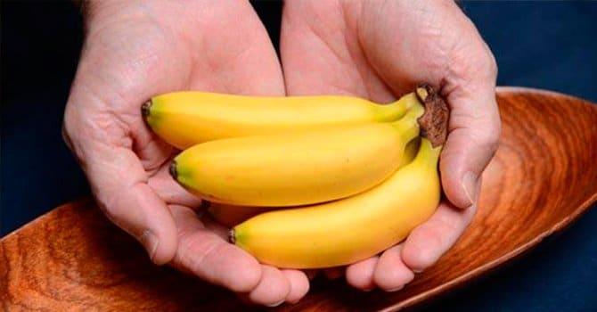 Банановый сорт мини