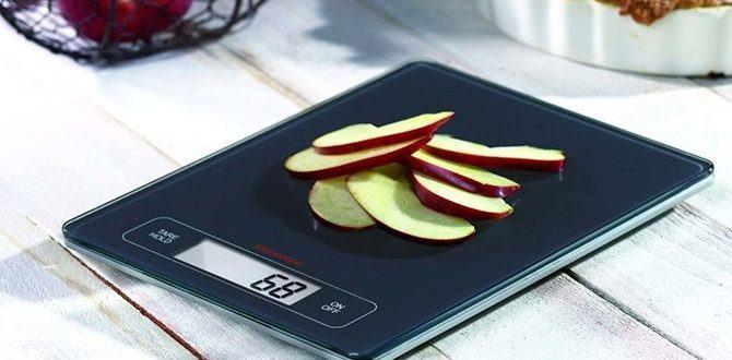 Разберем, какие кухонные электронные весы лучше выбрать