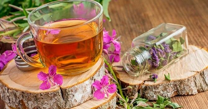 Кипрейный чай очень полезен для здоровья