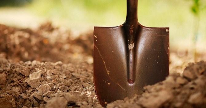 Виды лопат, идеального орудия труда