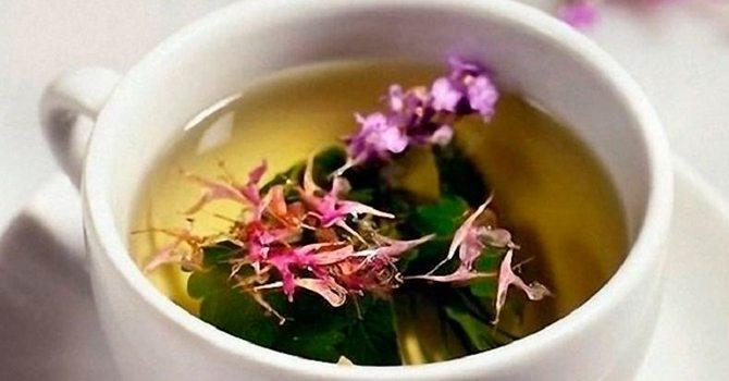 Как правильно заварить сушеные цветки и листья чая