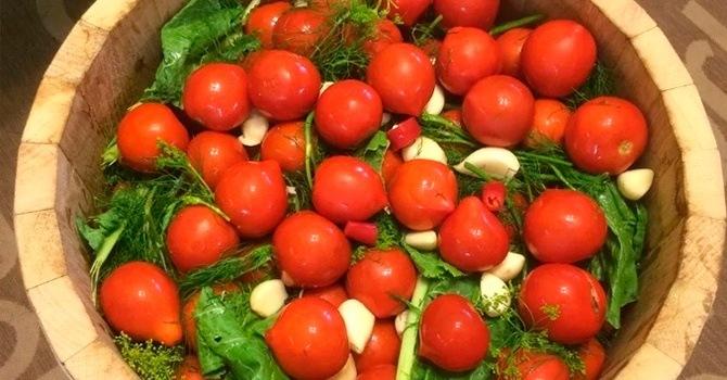 Рецепт бочковых соленых помидоров