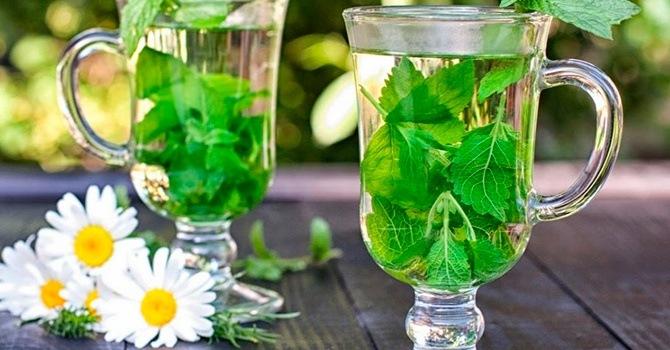 Целебный травяной чай с ромашкой и мелиссой