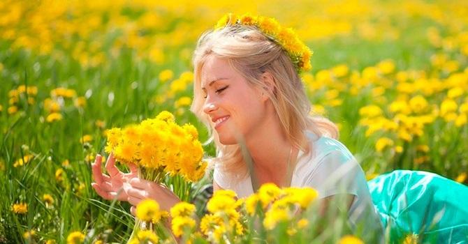 Цветки одуванчика полезны для женского здоровья
