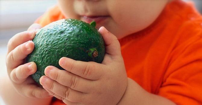 Авокадо для детей