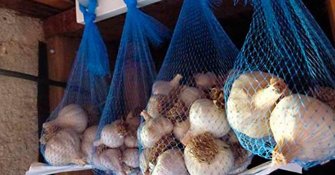 Хранение чеснока в чулках или сетках