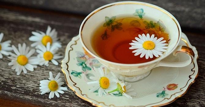 Полезные свойства чая из ромашки для организма человека
