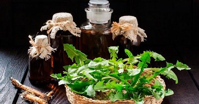 Из одуванчика готовятся много различных лекарственных средств