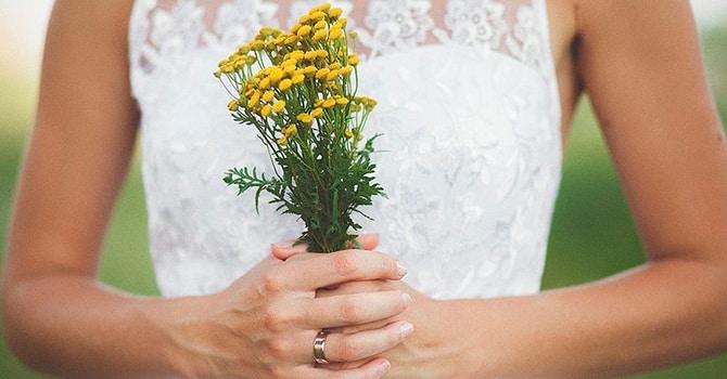 Разумное применение цветков пижмы для здоровья человека