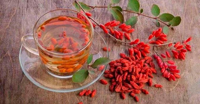 Чай из ягод дерезы полезен для здоровья