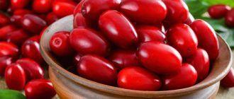 Кизил: полезные свойства для организма женщин и мужчин