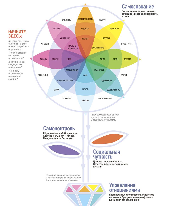 Модель Гоулмана состоит из 4 элементов