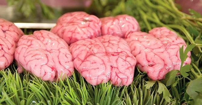 Мозги свиные являются деликатесным продуктом