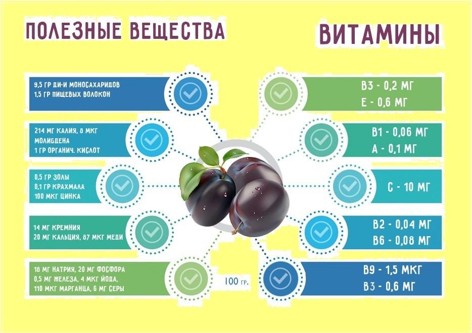 Полезные вещества и витамины сливы