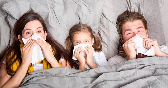 Простуда и грипп лечатся настоем из листьев кизила