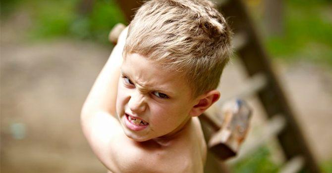 Вспышки гнева – первые проявления детского дезинтегративного расстройства