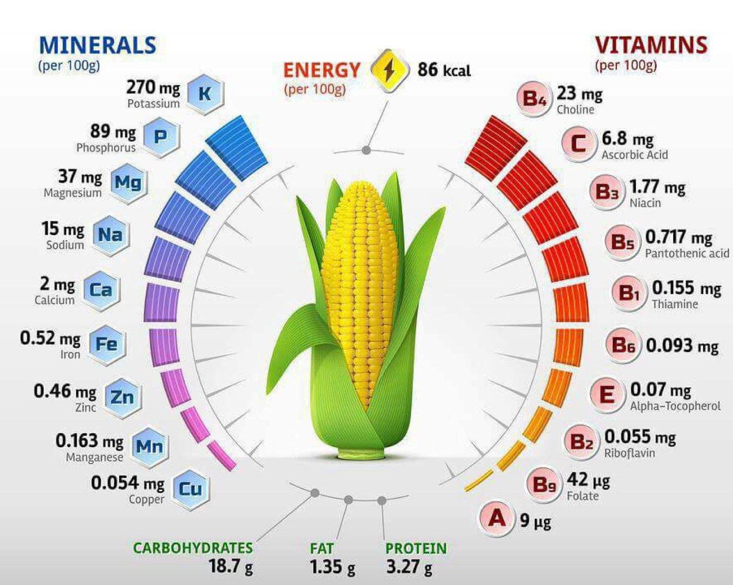 Таблица химического состава кукурузы