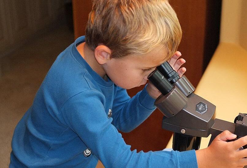 Микроскоп для мальчика 11 лет