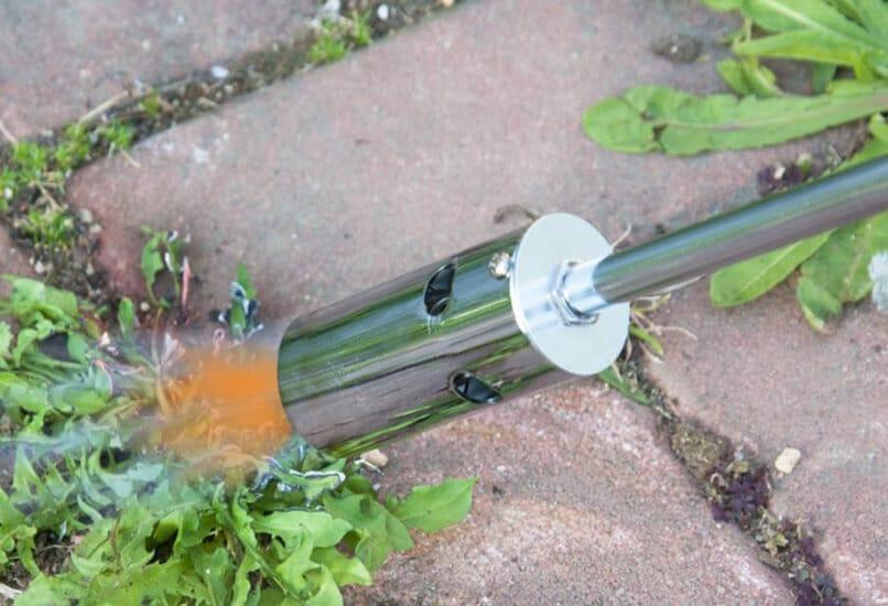 Уничтожение сорняков методом выжигания