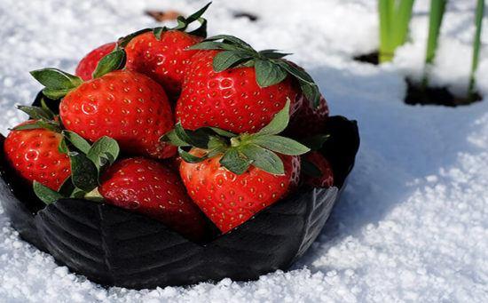 Как правильно укрыть клубнику на зиму
