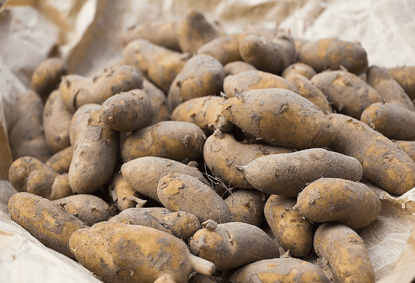 Картофель Ратте