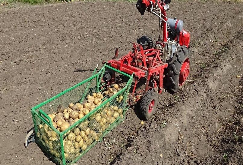 Механизированная уборка картошки