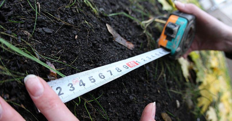 Сколько соток в гектаре и как правильно посчитать