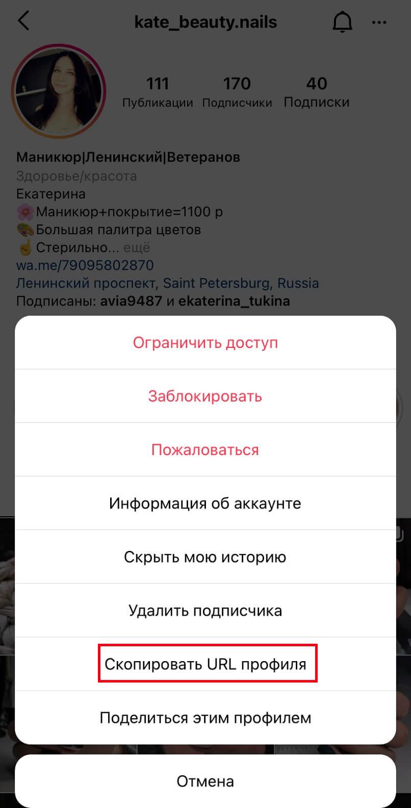 копируем URL-профиля