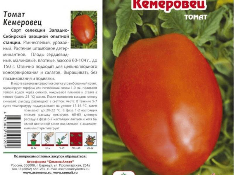 Кемеровец