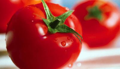 Выбираем сорта помидоров