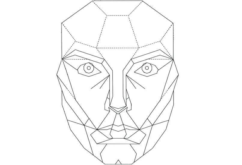 Маска-схема идеального лица